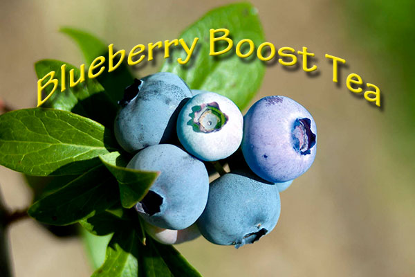 Blueberry Boost